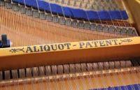 Bluthner Aliquot Patent.JPG?146126057507