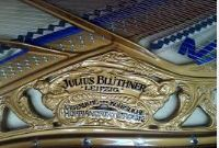 Bluthner Arpa Leipzig Logo.JPG?146126043