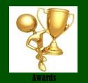 Icons.Awards.1.jpg